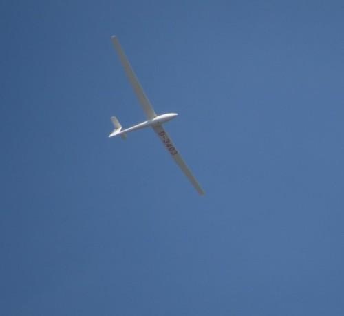 Glider - D-3403-02