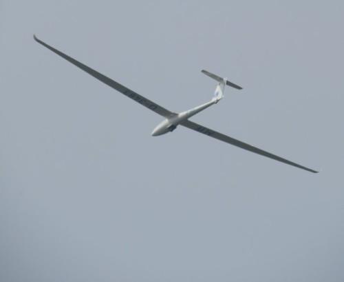 Glider - D-3483-04