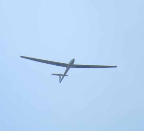 Glider - D-3571-01