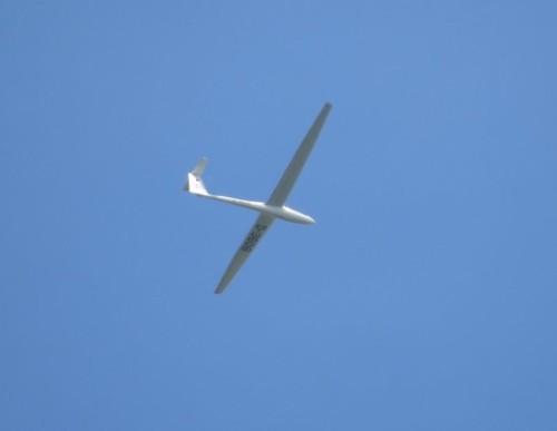 Glider - D-3608-01