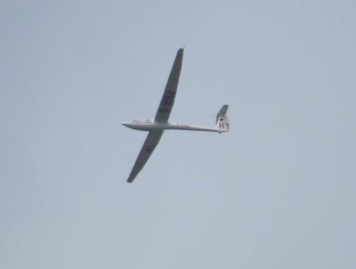 Glider - D-3952-01