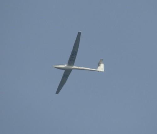 Glider - D-4130-01