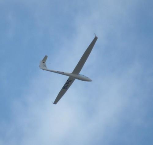 Glider - D-4156-01