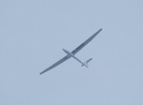 Glider - D-4235-01