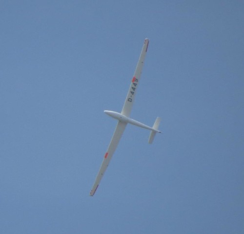 Glider - D-4449-02