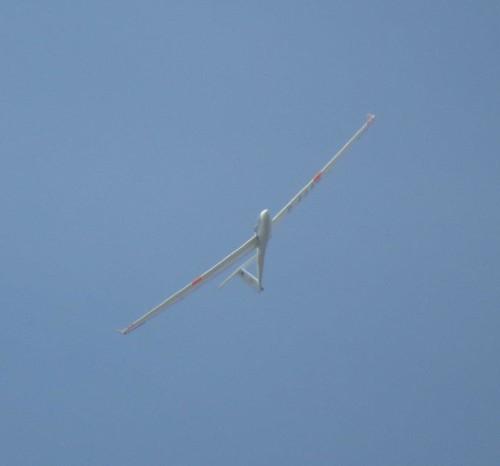 Glider - D-4449-03