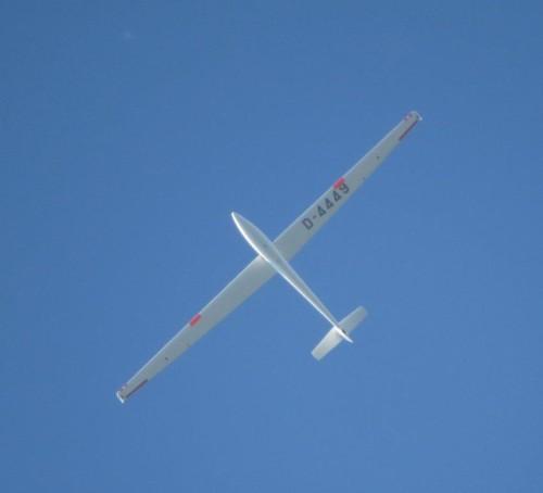 Glider - D-4449-04