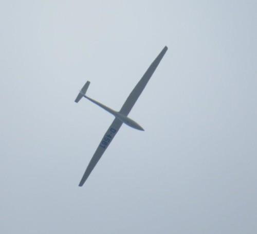 Glider - D-4581-01