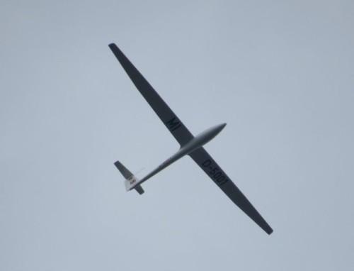 Glider - D-5001-01