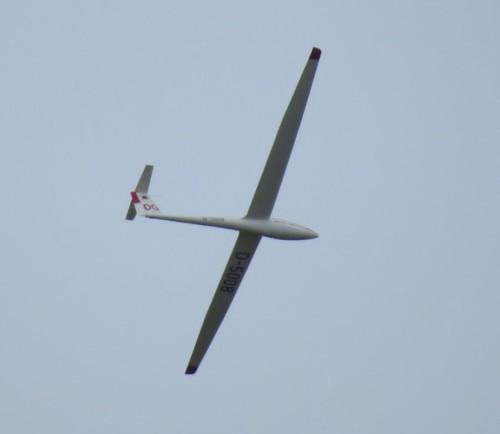 Glider - D-5008-02