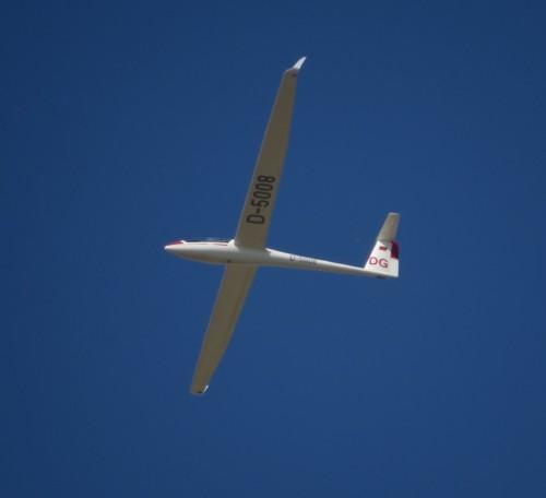 Glider - D-5008-04