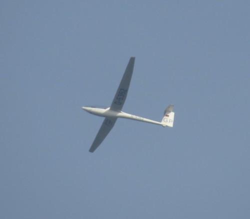 Glider - D-5352-01