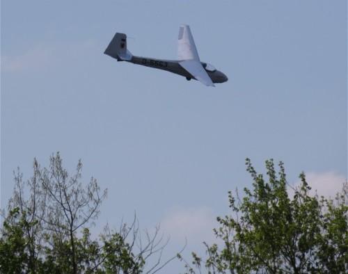 Glider - D-5563-02
