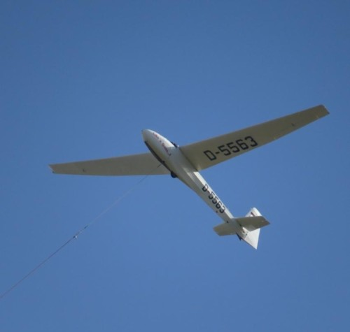 Glider - D-5563-03