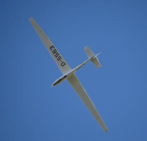 Glider - D-5563-04