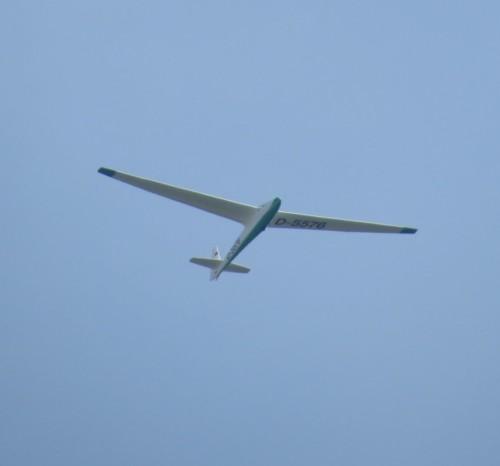 Glider - D-5576-01
