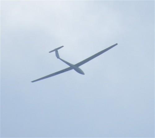 Glider - D-5666-01