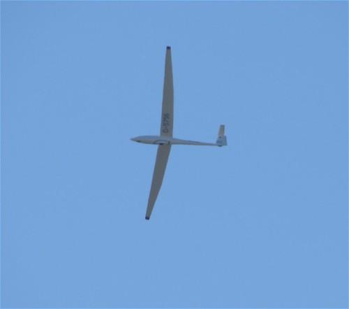 Glider - D-5756-01