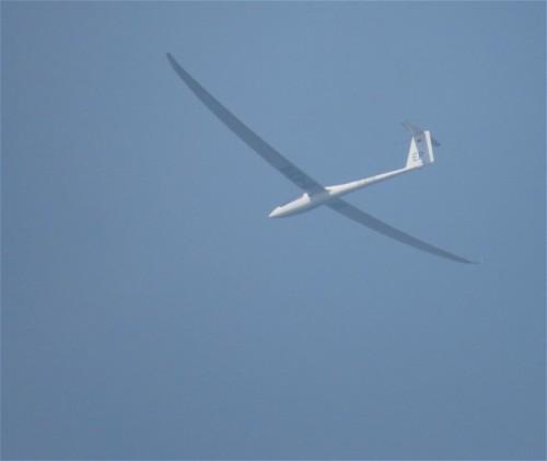 Glider - D-6318-01