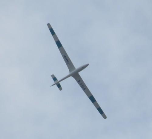 Glider - D-6365-02