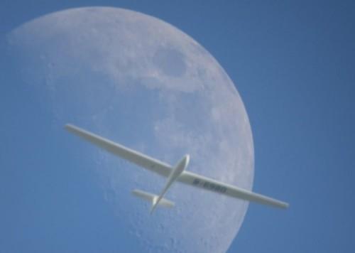 Glider - D-6980-01