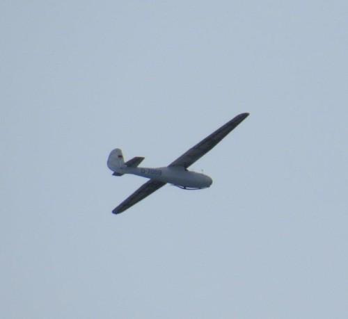 Glider - D-7059-03