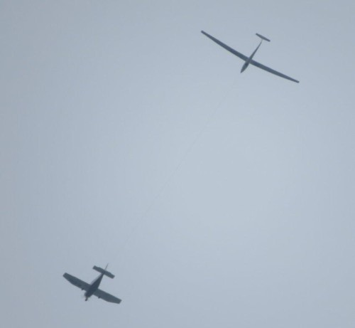 Glider - D-7679-01