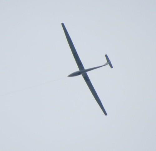 Glider - D-7679-02