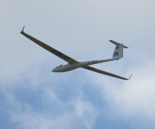 Glider - D-7831-01