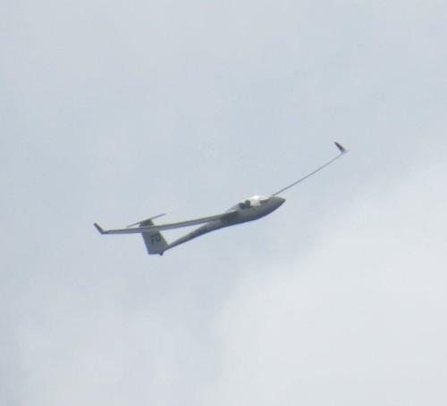 Glider - D-7952-01