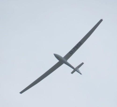 Glider - D-7952-02