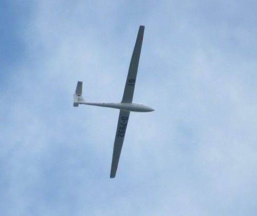 Glider - D-7992-01