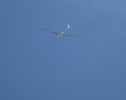 Glider - D-8291-01