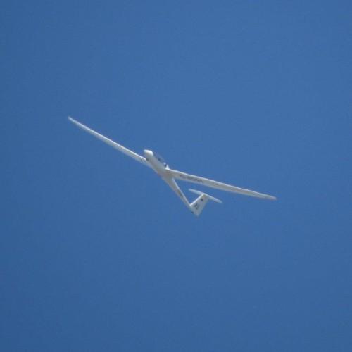 Glider - D-8291-06