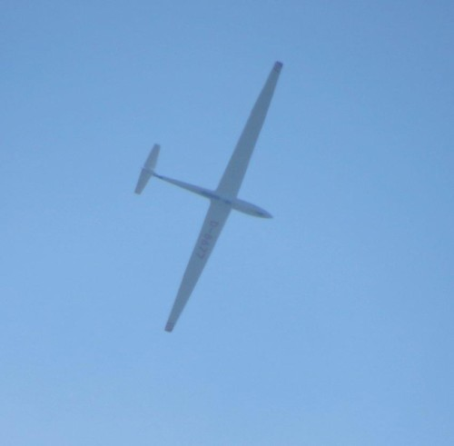 Glider - D-8677-03