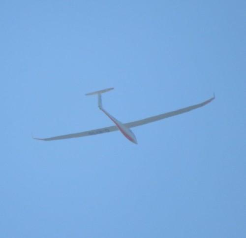 Glider - D-8710-01