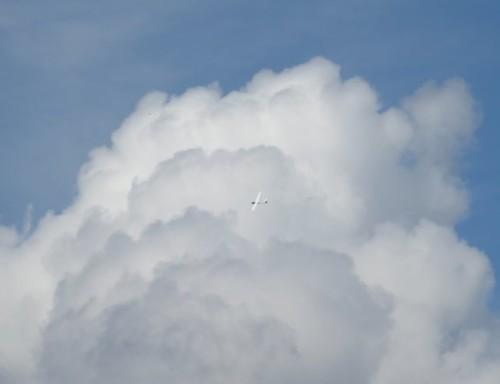 Glider - D-8977-03