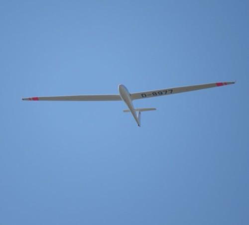 Glider - D-8977-04