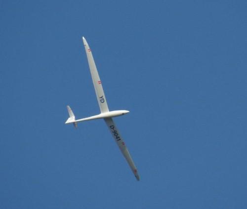 Glider - D-9041-05