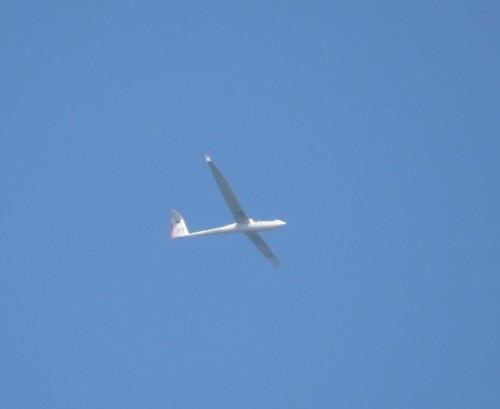Glider - D-9057-01