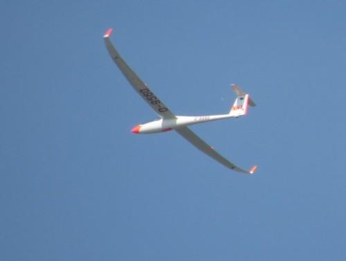Glider - D-9560-01