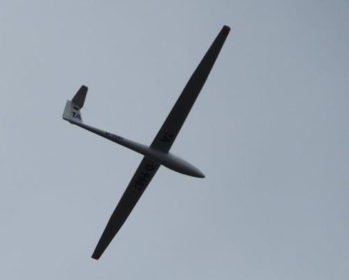 Glider - D-9687-01