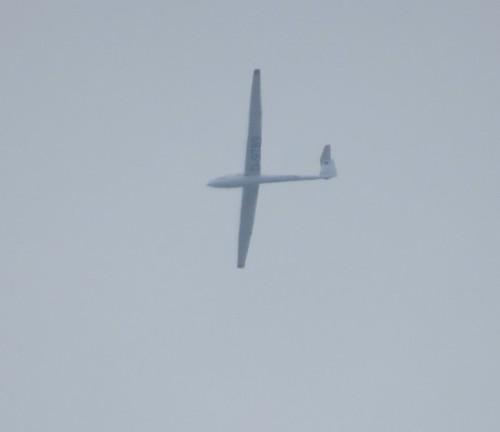 Glider - D-9789-01