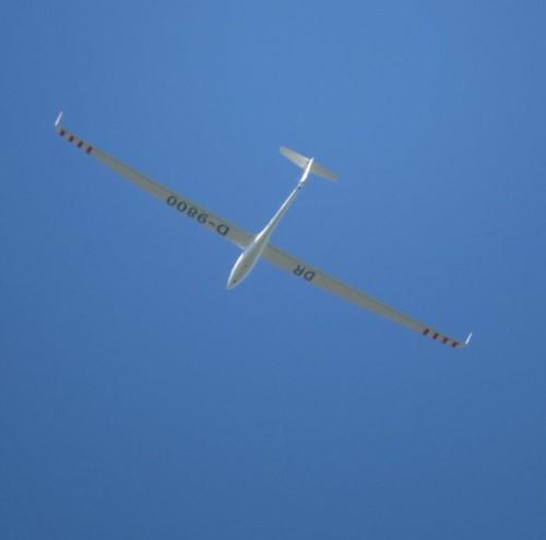 Glider - D-9800-01
