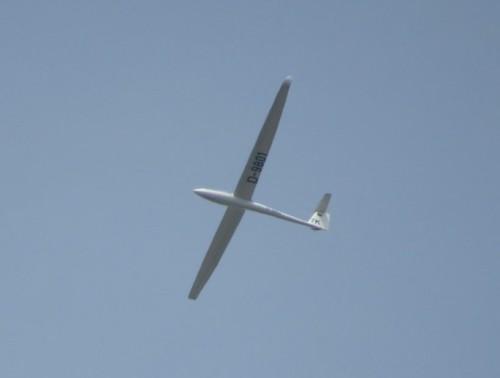 Glider - D-9801-01