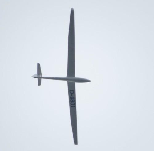 Glider - D-9801-X8-02