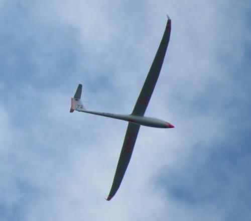 Glider - D-9972-01