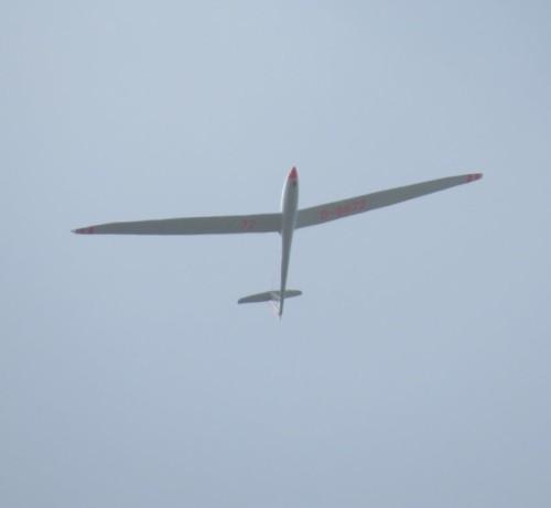 Glider - D-9972-02