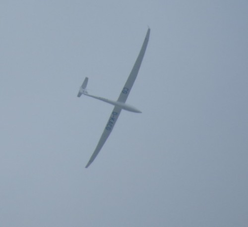 Glider - D-KACG-01