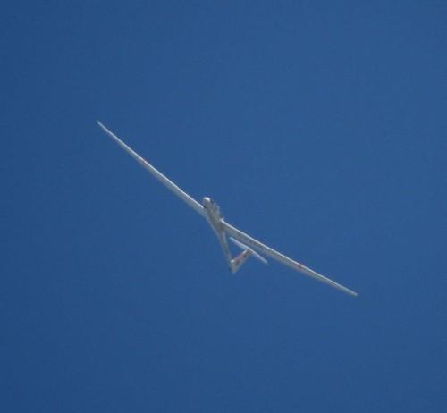 Glider - D-KACN-05